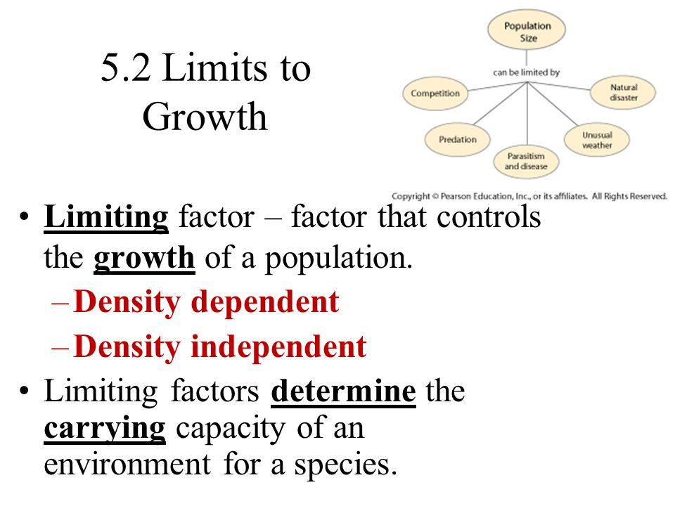 Limiting Factors Examples Biology 47738 Timehd