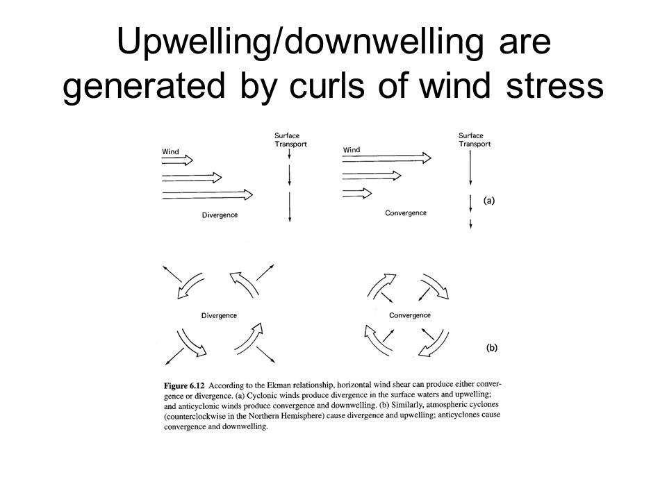 Upwelling/downwelling are generated by curls of wind stress