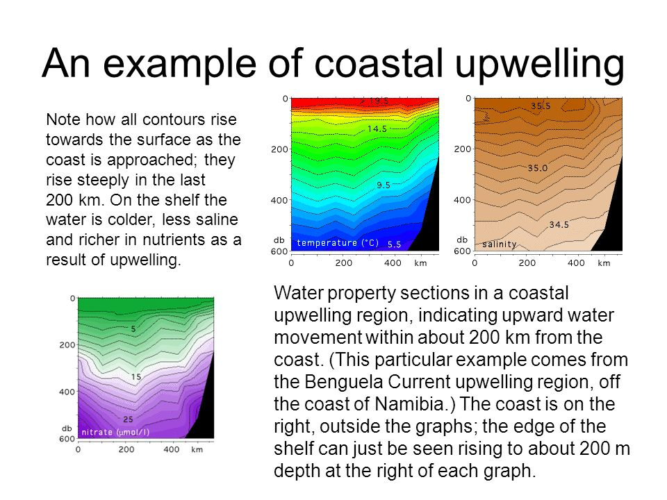 An example of coastal upwelling Water property sections in a coastal upwelling region, indicating upward water movement within about 200 km from the coast.