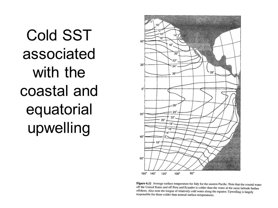 Cold SST associated with the coastal and equatorial upwelling