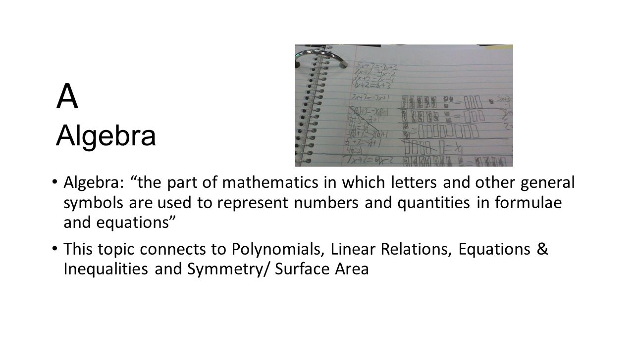 Math 9 a to z project by shawn robinson algebra algebra the 2 algebra biocorpaavc Choice Image