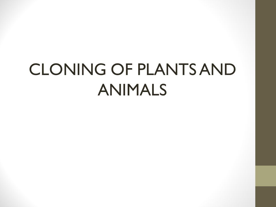 CLONING OF PLANTS AND ANIMALS