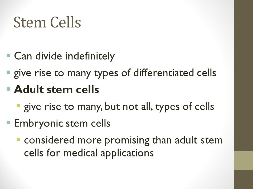Stem Cells  Can divide indefinitely  give rise to many types of differentiated cells  Adult stem cells  give rise to many, but not all, types of cells  Embryonic stem cells  considered more promising than adult stem cells for medical applications