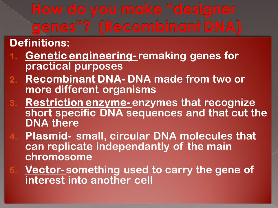 Definitions: 1. Genetic engineering- remaking genes for practical purposes 2.