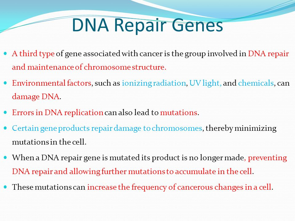 DNA Repair Genes A third type of gene associated with cancer is the group involved in DNA repair and maintenance of chromosome structure.