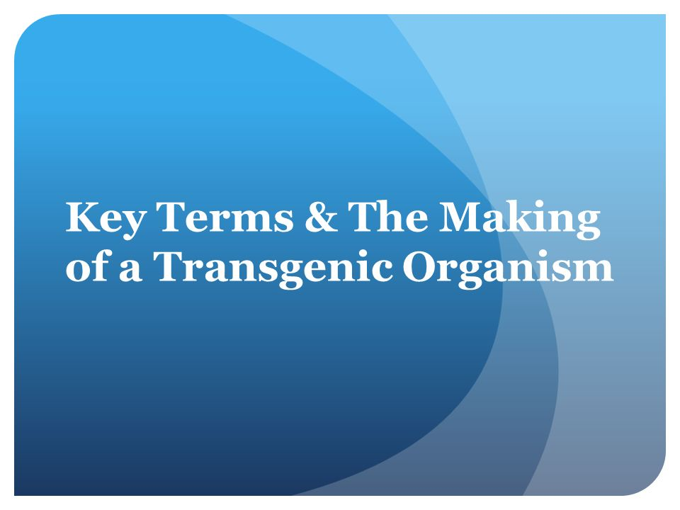 Key Terms & The Making of a Transgenic Organism