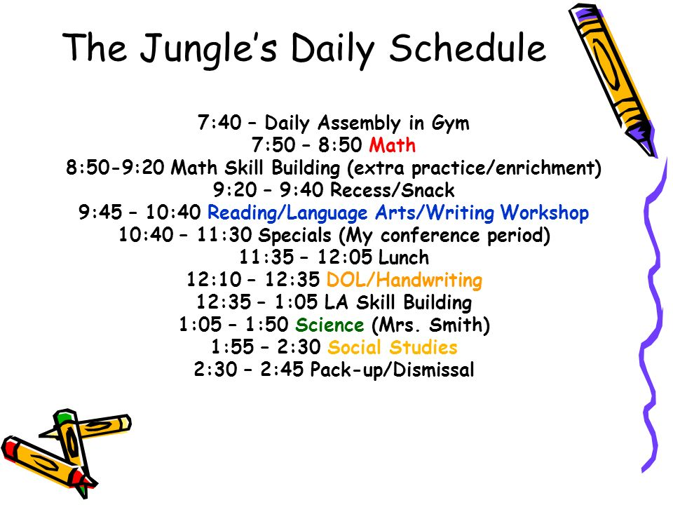 The Jungle's Daily Schedule 7:40 – Daily Assembly in Gym 7:50 – 8:50 Math 8:50-9:20 Math Skill Building (extra practice/enrichment) 9:20 – 9:40 Recess/Snack 9:45 – 10:40 Reading/Language Arts/Writing Workshop 10:40 – 11:30 Specials (My conference period) 11:35 – 12:05 Lunch 12:10 – 12:35 DOL/Handwriting 12:35 – 1:05 LA Skill Building 1:05 – 1:50 Science (Mrs.