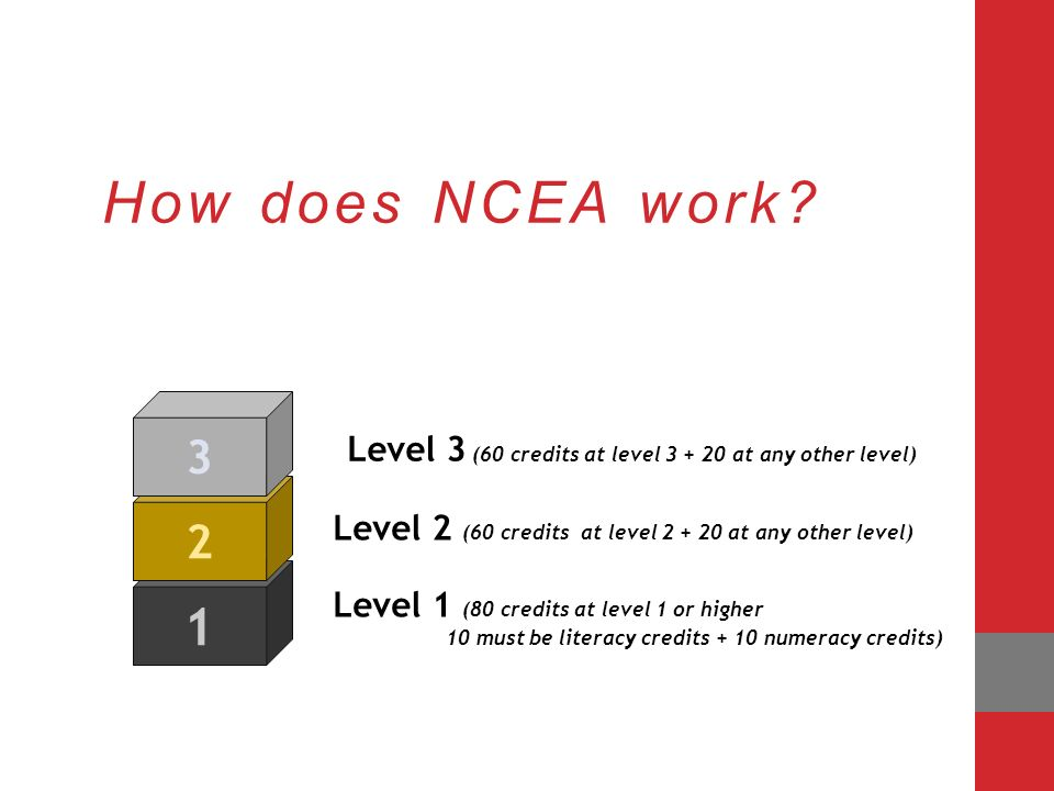 ncea level 3 english essay structure
