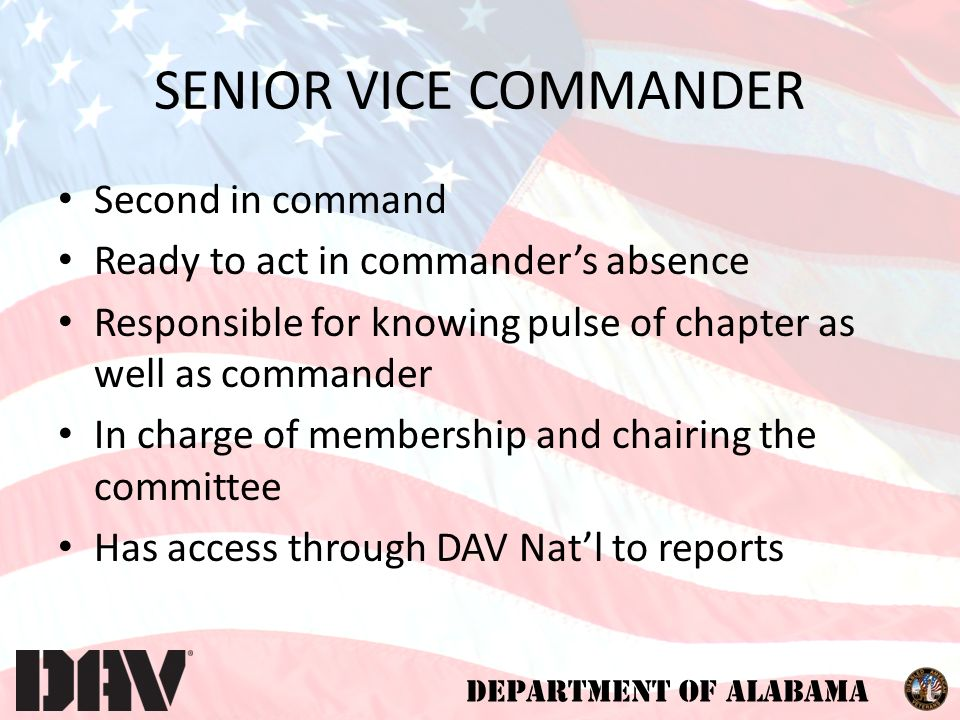 DEPARTMENT OF ALABAMA SENIOR VICE COMMANDER Second in command Ready to act in commander's absence Responsible for knowing pulse of chapter as well as commander In charge of membership and chairing the committee Has access through DAV Nat'l to reports