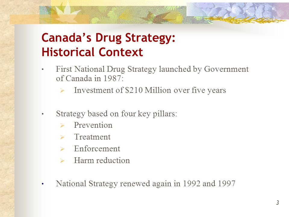 3 Canada's Drug Strategy: Historical Context First National Drug Strategy launched by Government of Canada in 1987:  Investment of $210 Million over five years Strategy based on four key pillars:  Prevention  Treatment  Enforcement  Harm reduction National Strategy renewed again in 1992 and 1997