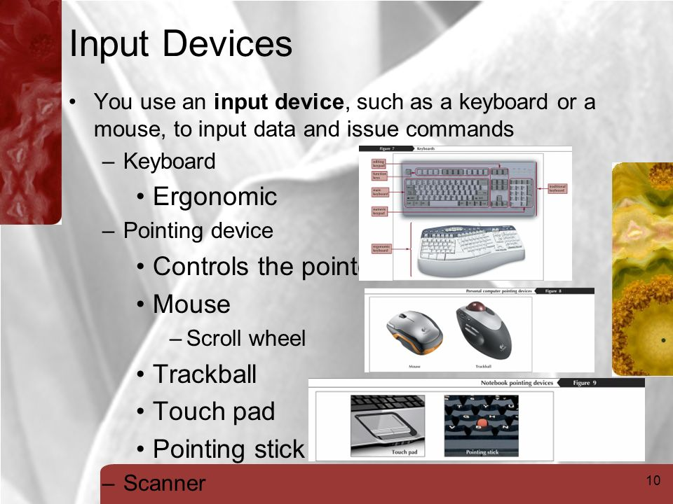 10 Input Devices You use an input device, such as a keyboard or a mouse, to input data and issue commands –Keyboard Ergonomic –Pointing device Controls the pointer Mouse –Scroll wheel Trackball Touch pad Pointing stick –Scanner