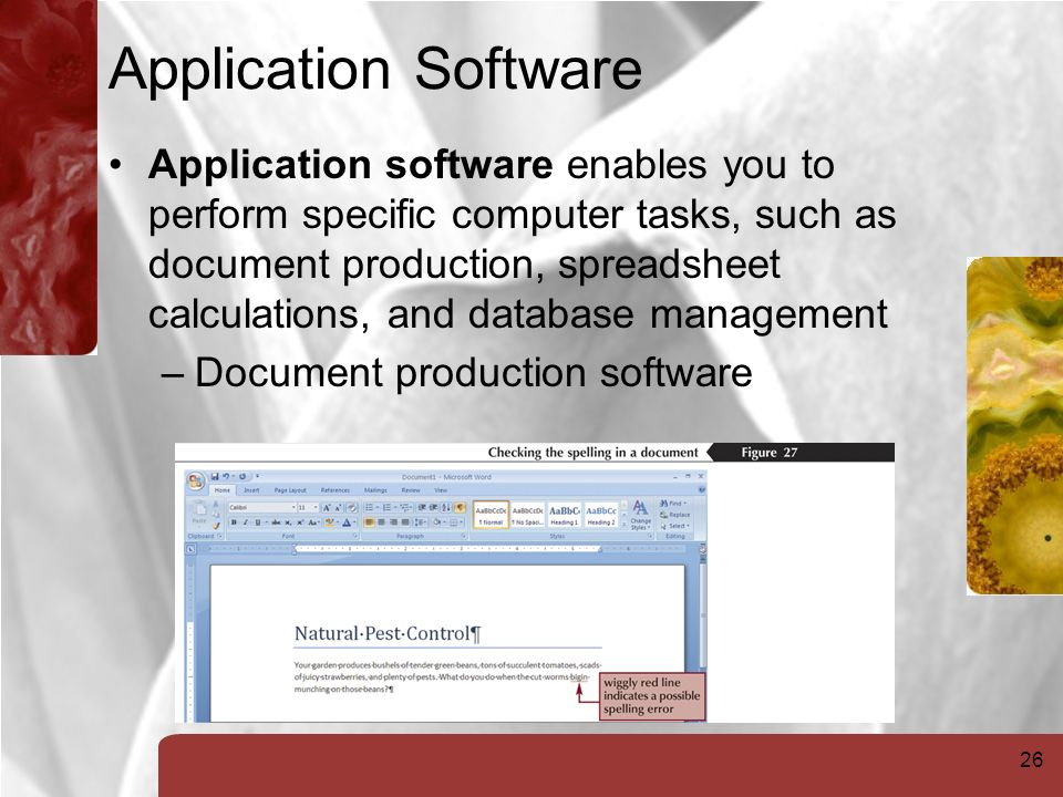 26 Application Software Application software enables you to perform specific computer tasks, such as document production, spreadsheet calculations, and database management –Document production software