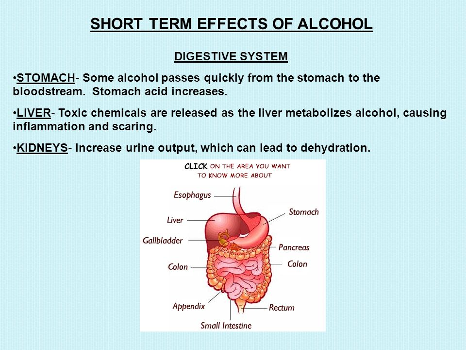 SHORT TERM EFFECTS OF ALCOHOL DIGESTIVE SYSTEM STOMACH- Some alcohol passes quickly from the stomach to the bloodstream.