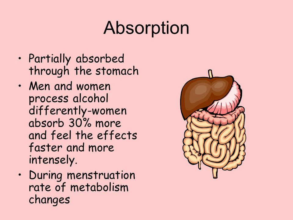 Absorption Partially absorbed through the stomach Men and women process alcohol differently-women absorb 30% more and feel the effects faster and more intensely.