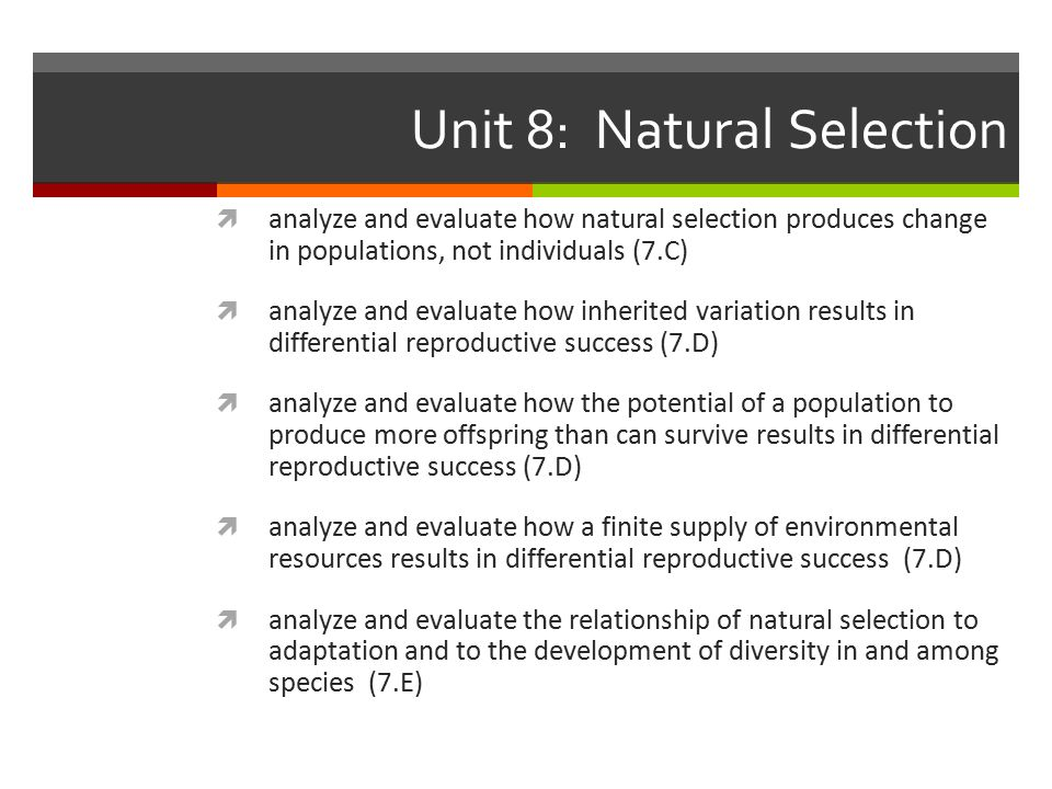 Unit 8: Natural Selection  analyze and evaluate how natural selection produces change in populations, not individuals (7.C)  analyze and evaluate how inherited variation results in differential reproductive success (7.D)  analyze and evaluate how the potential of a population to produce more offspring than can survive results in differential reproductive success (7.D)  analyze and evaluate how a finite supply of environmental resources results in differential reproductive success (7.D)  analyze and evaluate the relationship of natural selection to adaptation and to the development of diversity in and among species (7.E)