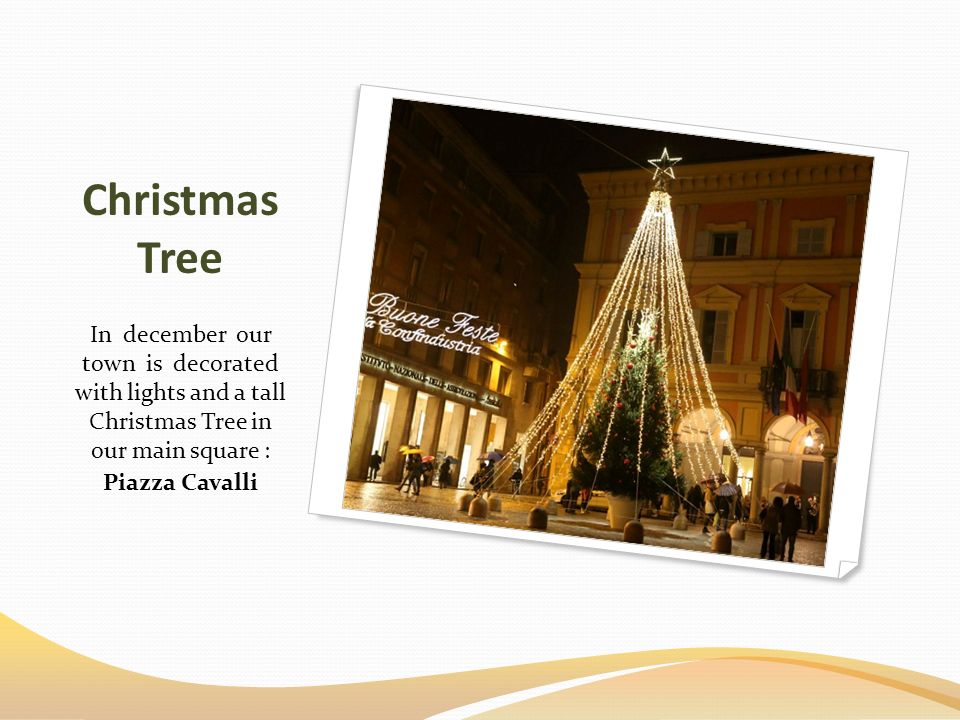 Christmas Tree In december our town is decorated with lights and a tall Christmas Tree in our main square : Piazza Cavalli