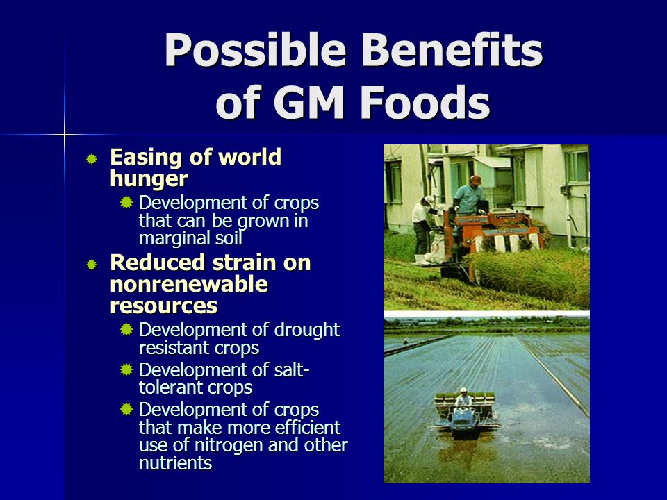Possible Benefits of GM Foods  Easing of world hunger  Development of crops that can be grown in marginal soil  Reduced strain on nonrenewable resources  Development of drought resistant crops  Development of salt- tolerant crops  Development of crops that make more efficient use of nitrogen and other nutrients
