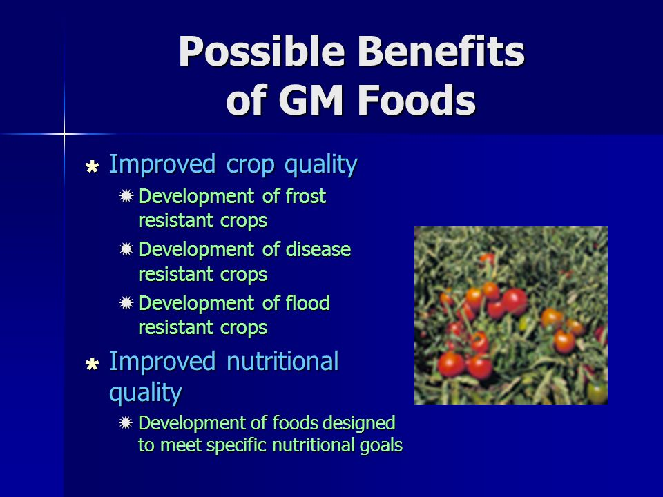 Possible Benefits of GM Foods  Improved crop quality  Development of frost resistant crops  Development of disease resistant crops  Development of flood resistant crops  Improved nutritional quality  Development of foods designed to meet specific nutritional goals