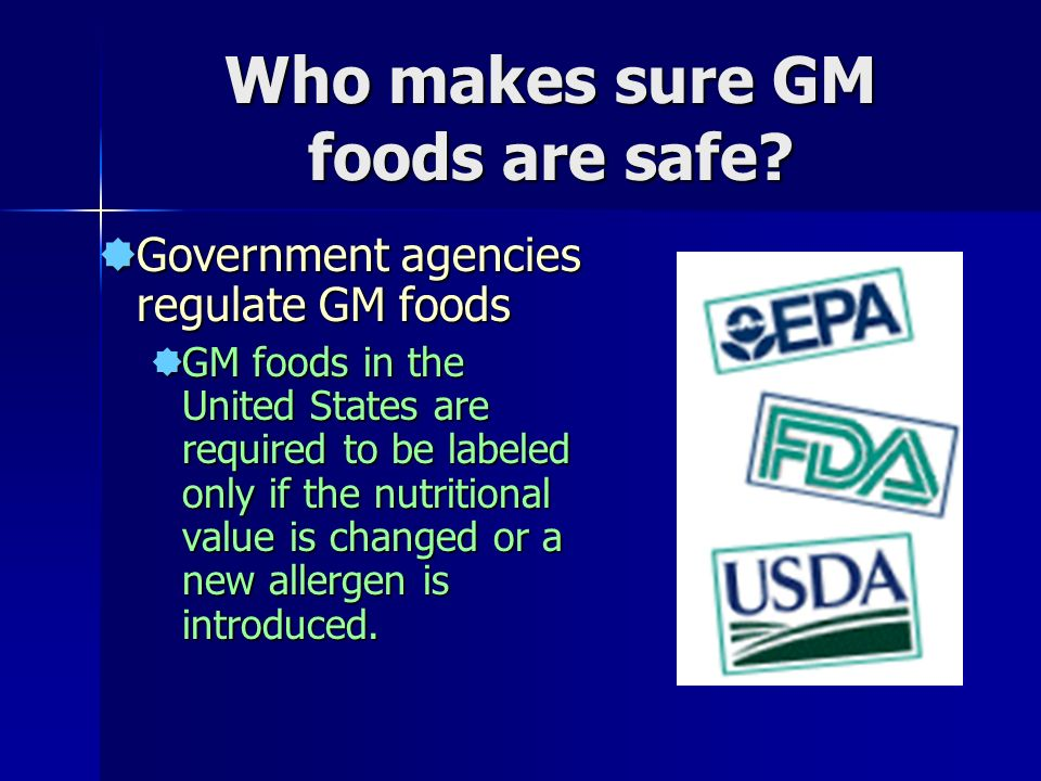 Who makes sure GM foods are safe.
