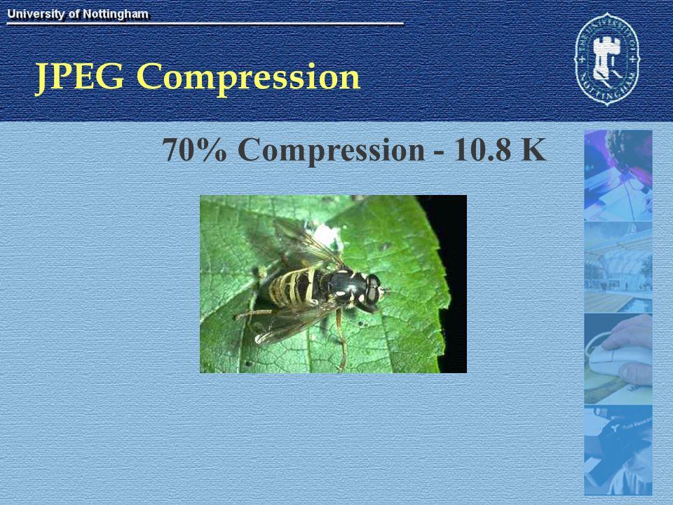 JPEG Compression 70% Compression - 10.8 K