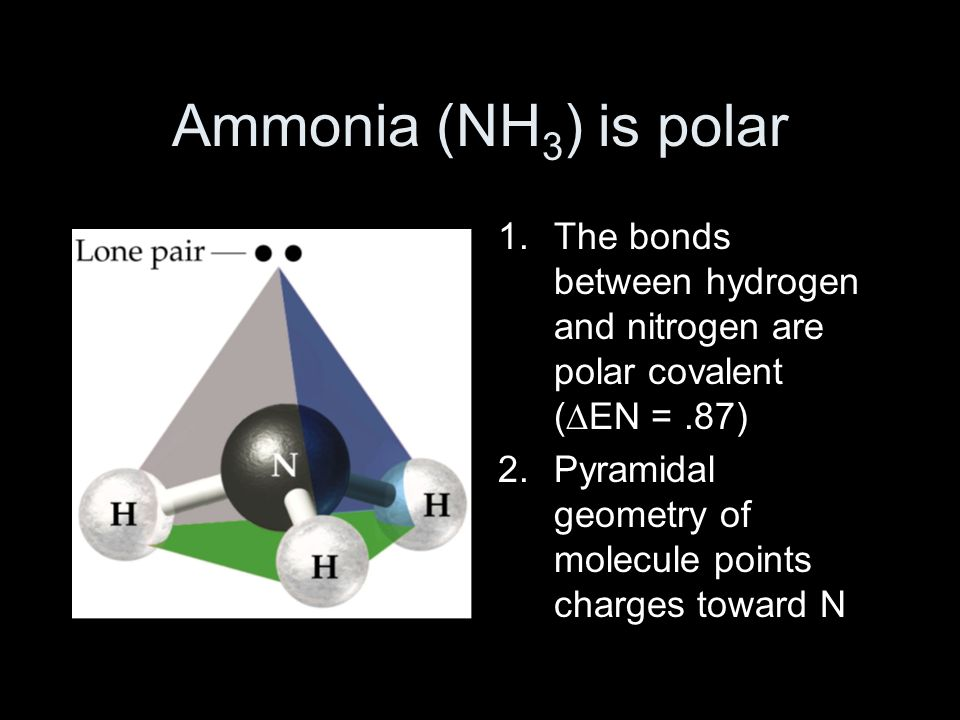 Ammonia (NH 3 ) is polar 1.The bonds between hydrogen and nitrogen are polar covalent (∆EN =.87) 2.Pyramidal geometry of molecule points charges toward N
