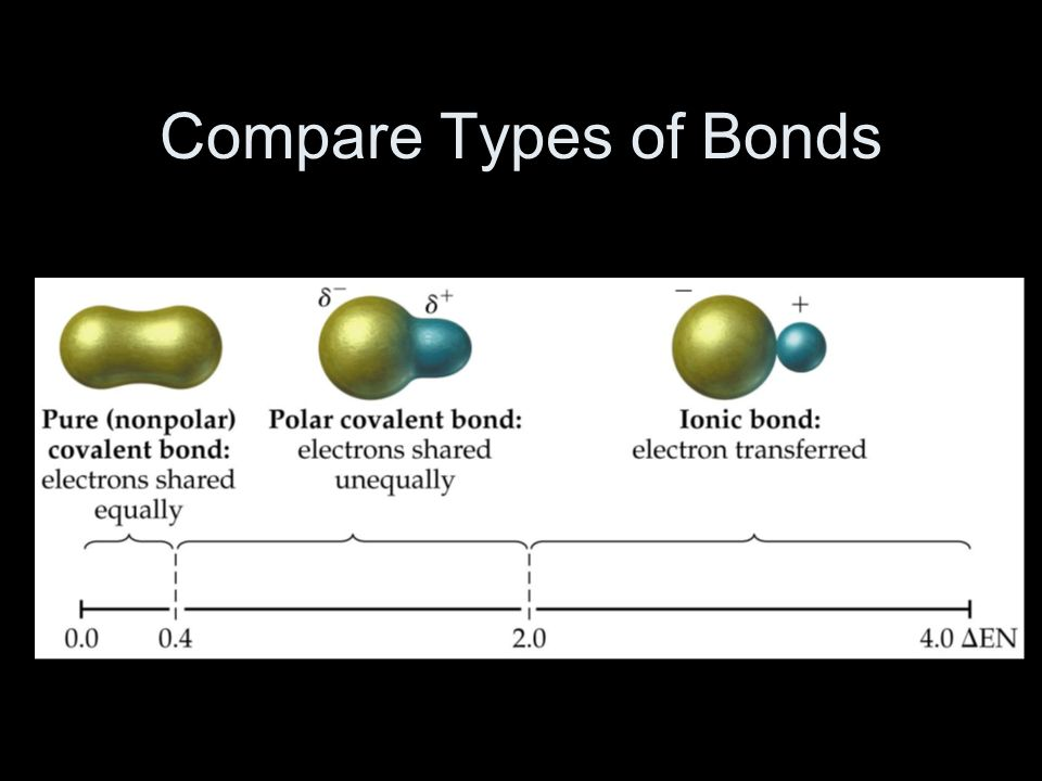 Compare Types of Bonds