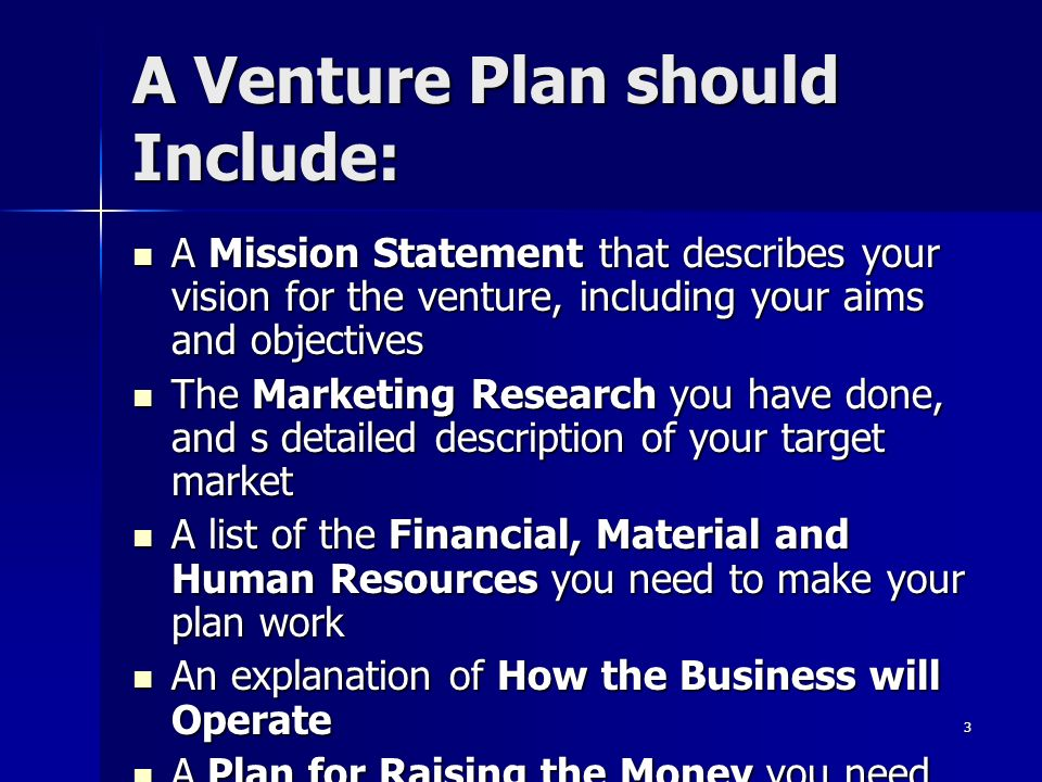 Venture plan