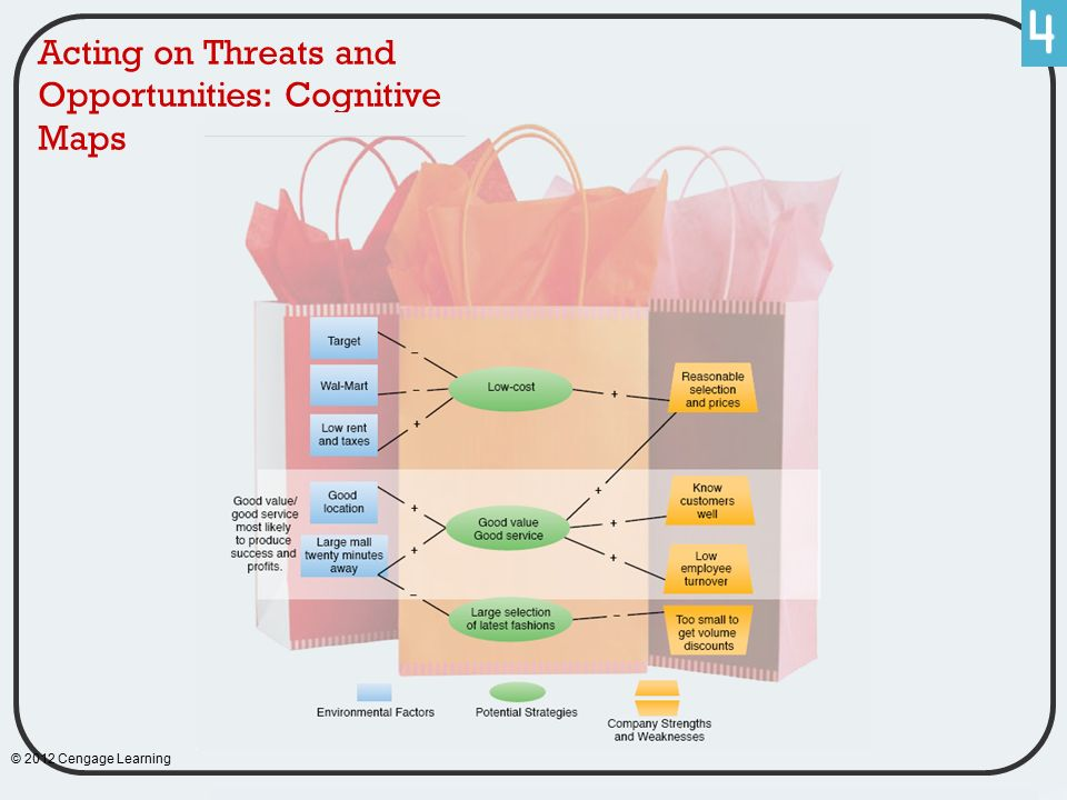 Acting on Threats and Opportunities: Cognitive Maps © 2012 Cengage Learning