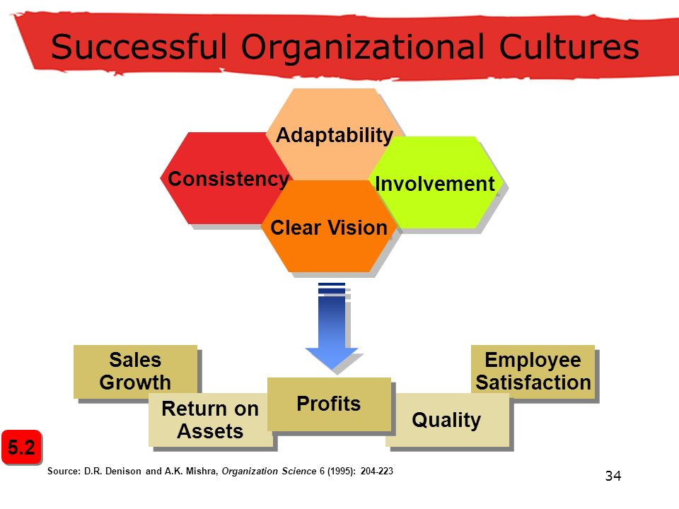 34 Successful Organizational Cultures Employee Satisfaction Employee Satisfaction Quality Consistency Adaptability Involvement Clear Vision Sales Growth Sales Growth Return on Assets Return on Assets Profits Source: D.R.