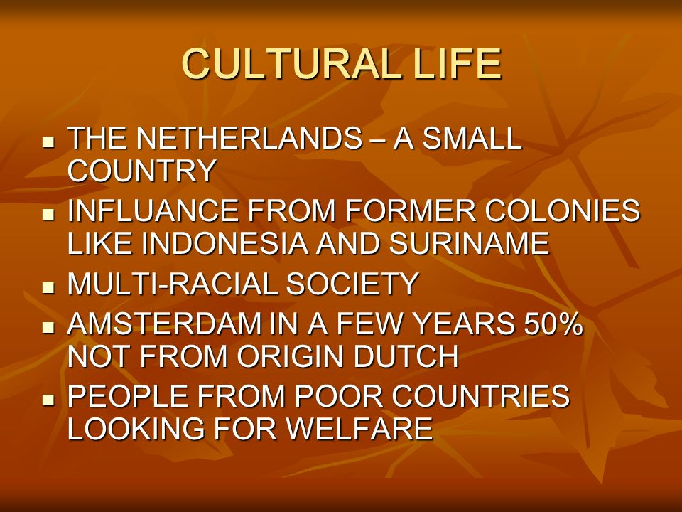 CULTURAL LIFE THE NETHERLANDS – A SMALL COUNTRY THE NETHERLANDS – A SMALL COUNTRY INFLUANCE FROM FORMER COLONIES LIKE INDONESIA AND SURINAME INFLUANCE FROM FORMER COLONIES LIKE INDONESIA AND SURINAME MULTI-RACIAL SOCIETY MULTI-RACIAL SOCIETY AMSTERDAM IN A FEW YEARS 50% NOT FROM ORIGIN DUTCH AMSTERDAM IN A FEW YEARS 50% NOT FROM ORIGIN DUTCH PEOPLE FROM POOR COUNTRIES LOOKING FOR WELFARE PEOPLE FROM POOR COUNTRIES LOOKING FOR WELFARE