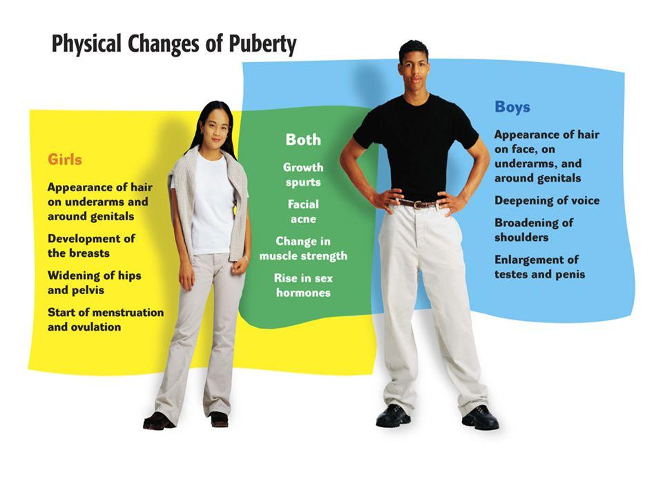 puberty essay