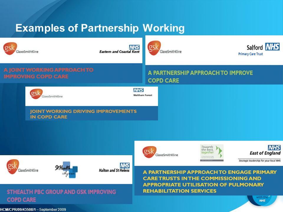 HCM/CPR/09/43508/1 – September 2009 Examples of Partnership Working