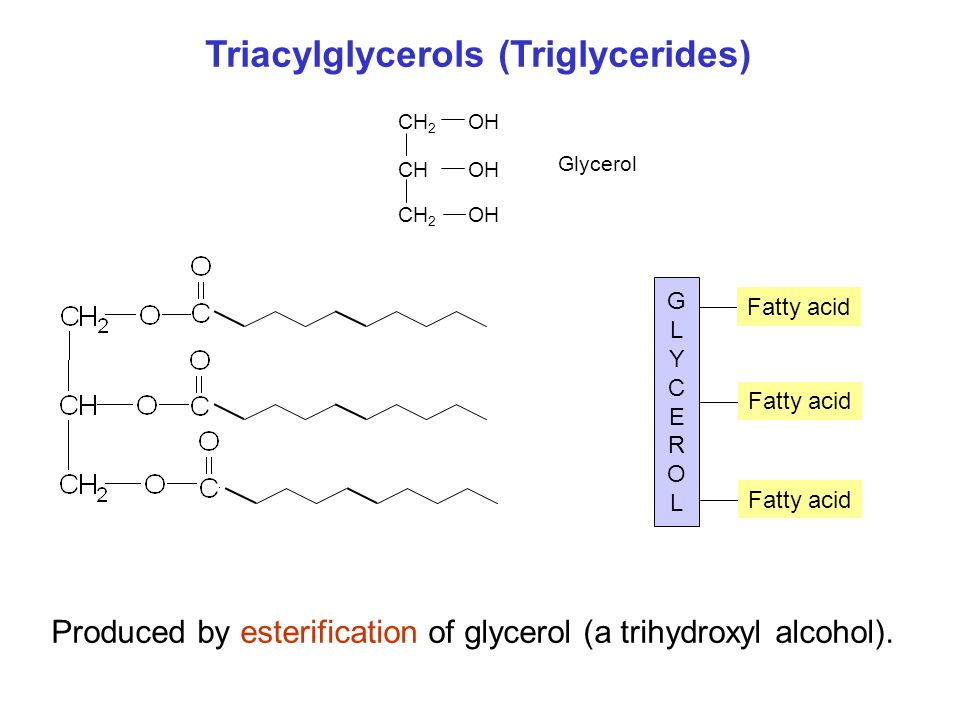 GLYCEROLGLYCEROL Fatty acid Triacylglycerols (Triglycerides) Produced by esterification of glycerol (a trihydroxyl alcohol).