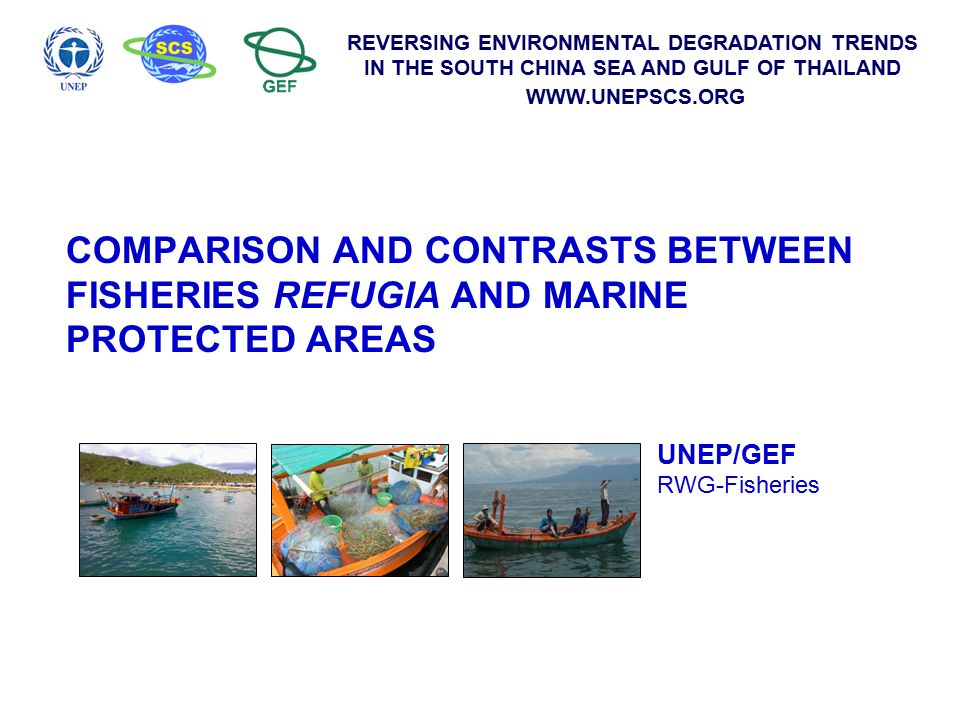 Reversing environmental degradation trends in the south china sea 1 reversing environmental degradation trends in the south china sea and gulf of thailand unepscs comparison and contrasts between fisheries refugia publicscrutiny Images