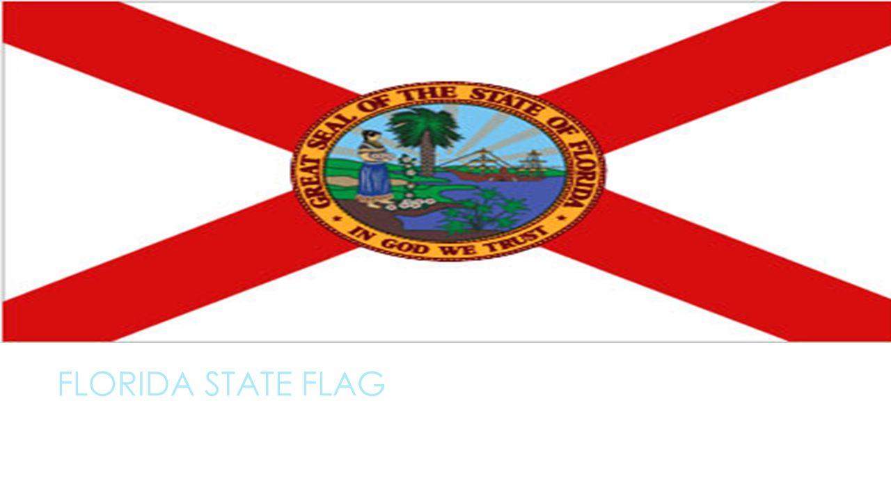 Florida state symbols by alex florida state flag ppt download 2 florida state flag buycottarizona