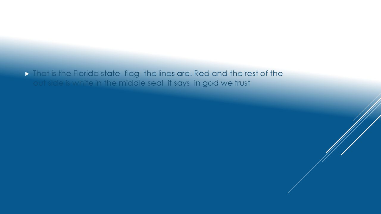 Florida state symbols by alex florida state flag ppt download that is the florida state flag the lines are buycottarizona