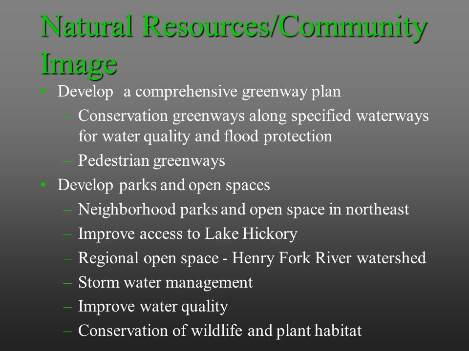 Natural Resources/Community Image Develop a comprehensive greenway plan –Conservation greenways along specified waterways for water quality and flood protection –Pedestrian greenways Develop parks and open spaces –Neighborhood parks and open space in northeast –Improve access to Lake Hickory –Regional open space - Henry Fork River watershed –Storm water management –Improve water quality –Conservation of wildlife and plant habitat