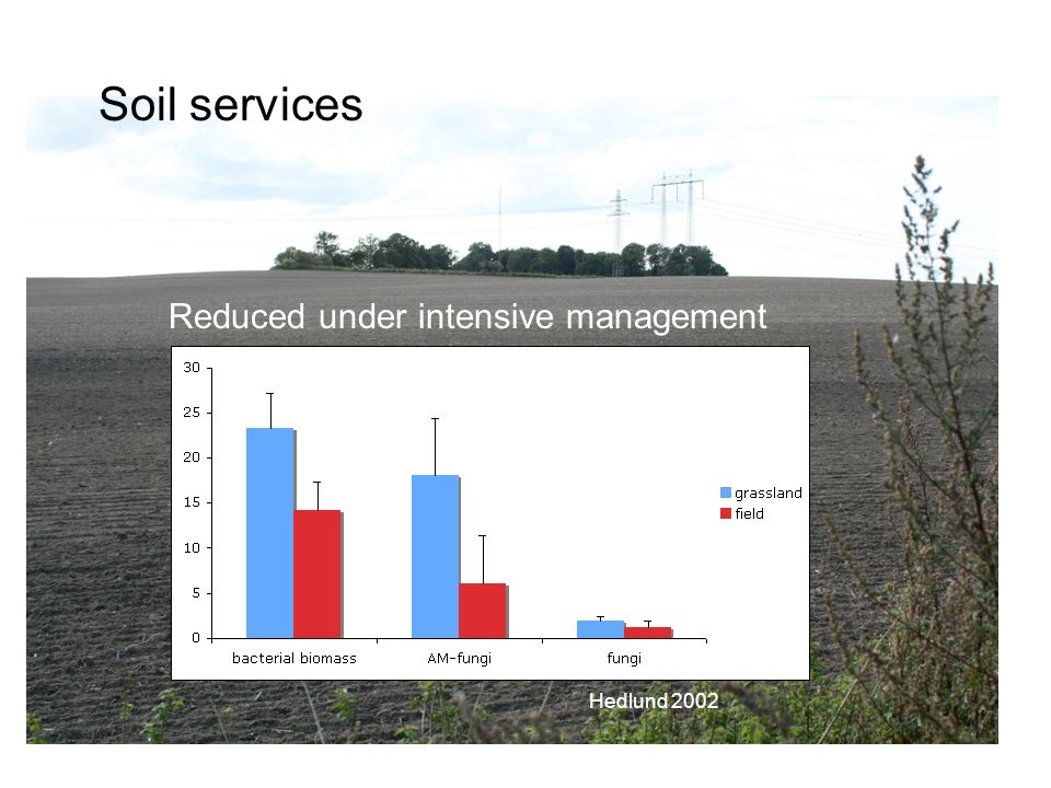 Soil services Reduced under intensive management Hedlund 2002