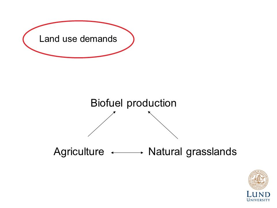 Biofuel production AgricultureNatural grasslands Land use demands