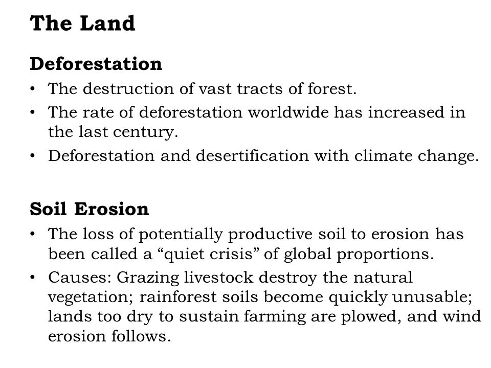 The Land Deforestation The destruction of vast tracts of forest.
