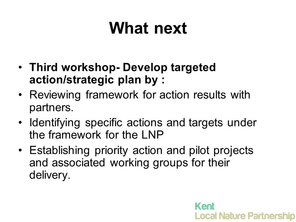 What next Third workshop- Develop targeted action/strategic plan by : Reviewing framework for action results with partners.