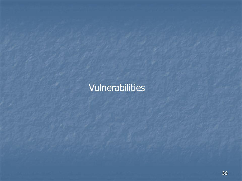 30 Vulnerabilities