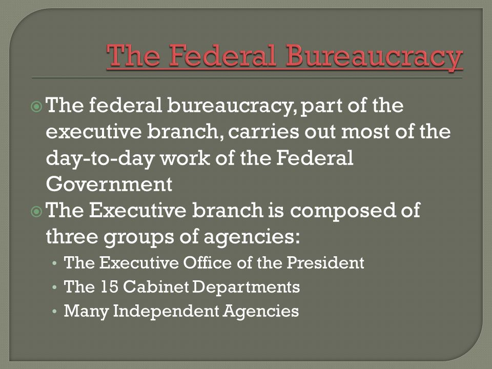 American Government.  The federal bureaucracy, part of the ...