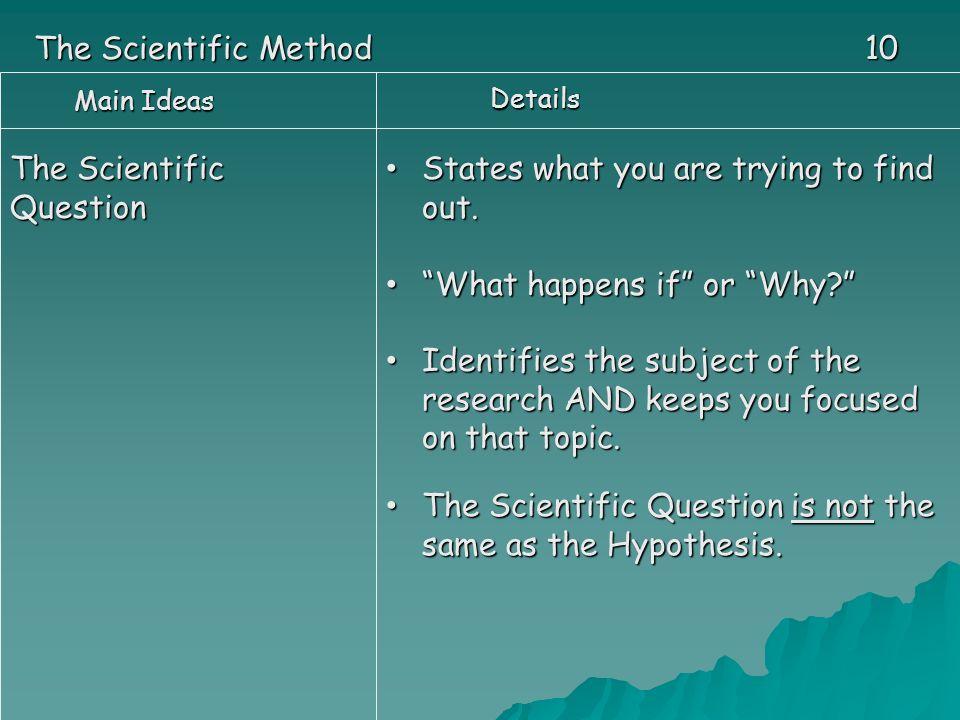 scientific method paper