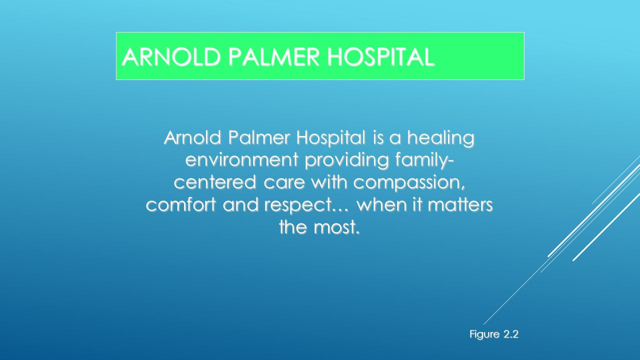 arnold palmer hospital cause and effect diagram