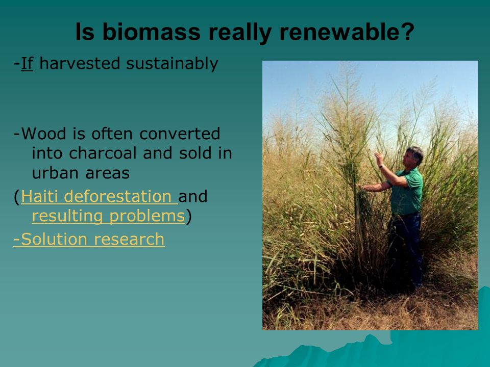 Is biomass really renewable.