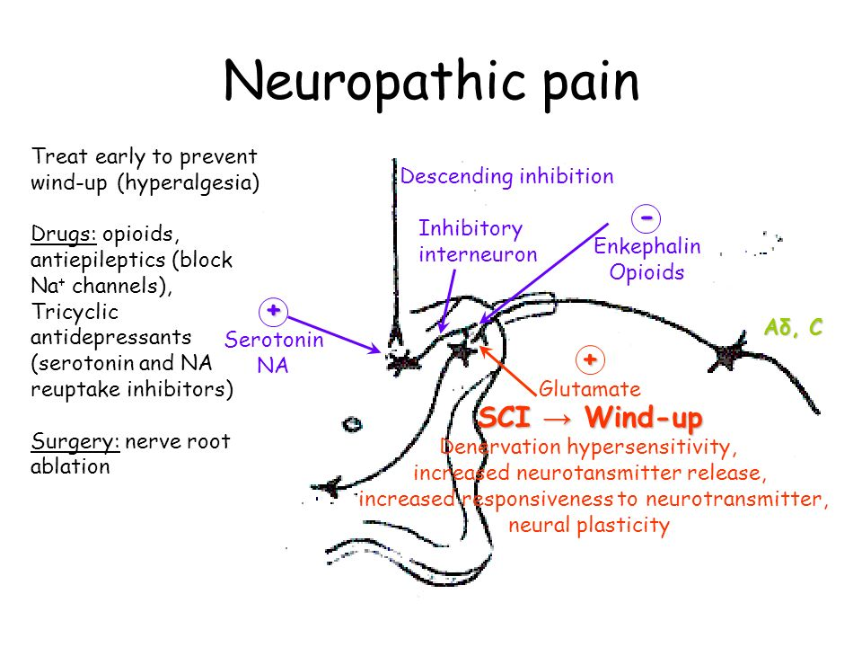 Neuropathic pain Aδ, C Descending inhibition Inhibitory interneuron + Serotonin NA - Enkephalin Opioids SCI → Wind-up Denervation hypersensitivity, increased neurotansmitter release, increased responsiveness to neurotransmitter, neural plasticity + Glutamate Treat early to prevent wind-up (hyperalgesia) Drugs: opioids, antiepileptics (block Na + channels), Tricyclic antidepressants (serotonin and NA reuptake inhibitors) Surgery: nerve root ablation