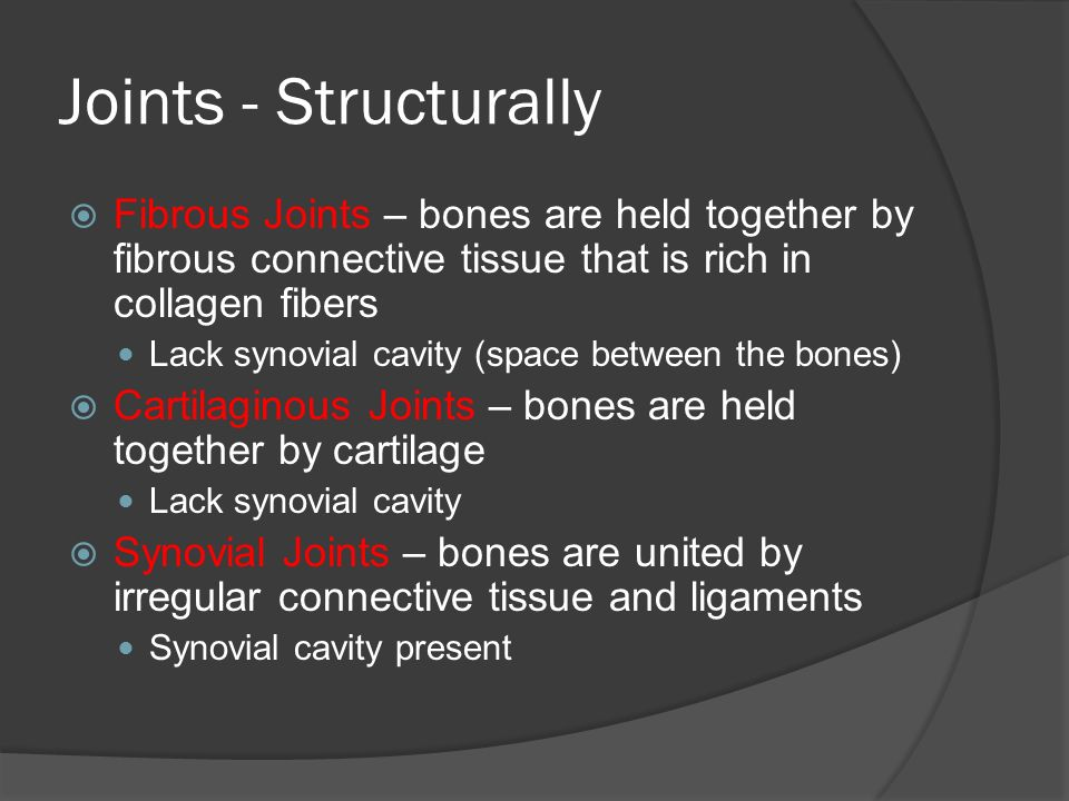 Joints - Structurally  Fibrous Joints – bones are held together by fibrous connective tissue that is rich in collagen fibers Lack synovial cavity (space between the bones)  Cartilaginous Joints – bones are held together by cartilage Lack synovial cavity  Synovial Joints – bones are united by irregular connective tissue and ligaments Synovial cavity present