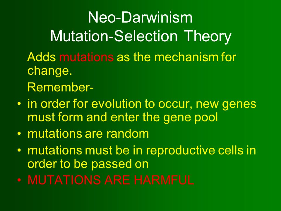 Could I get some help writing an essay about 'neo-Darwinism'?