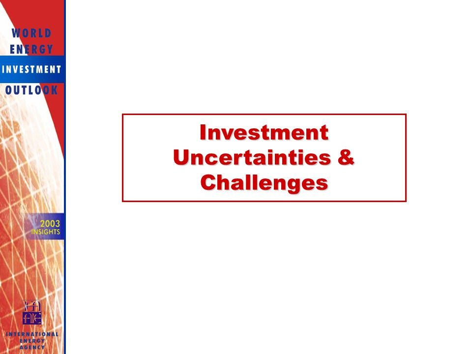 Investment Uncertainties & Challenges